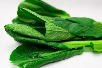 鉄分が豊富な小松菜