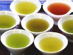緑茶・ウーロン茶