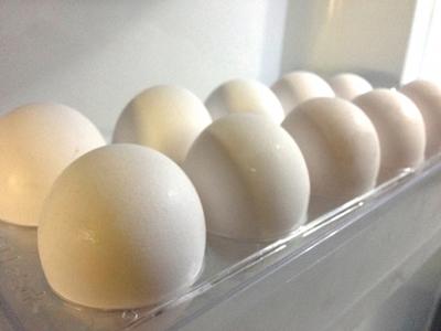 卵子凍結保存の費用